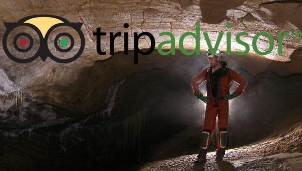 news-tripadvisor